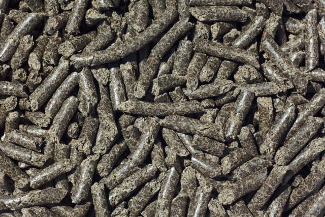 Foto pellet per conigli