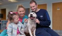 Foto Dopo tre anni il microchip riunisce il cane e la sua famiglia