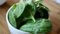 pianta di spinaci