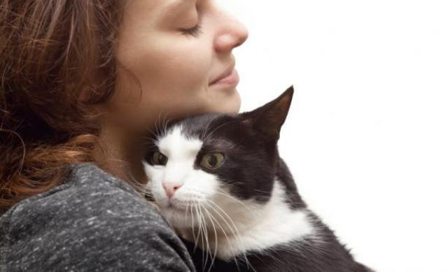 Foto Come e quando rimproverare il Gatto?
