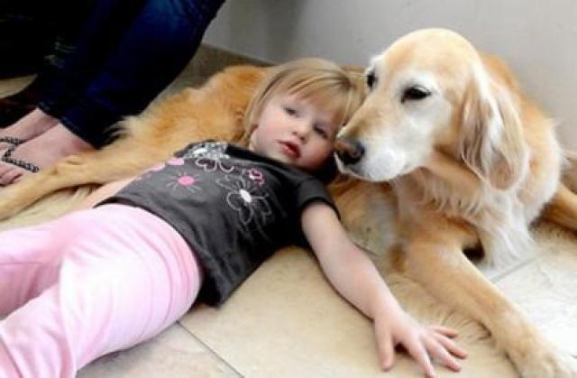 Foto Pet Therapy: quando è il Cane a guarire l'Uomo.