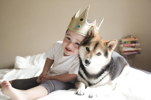 Foto cane e bambino autistico