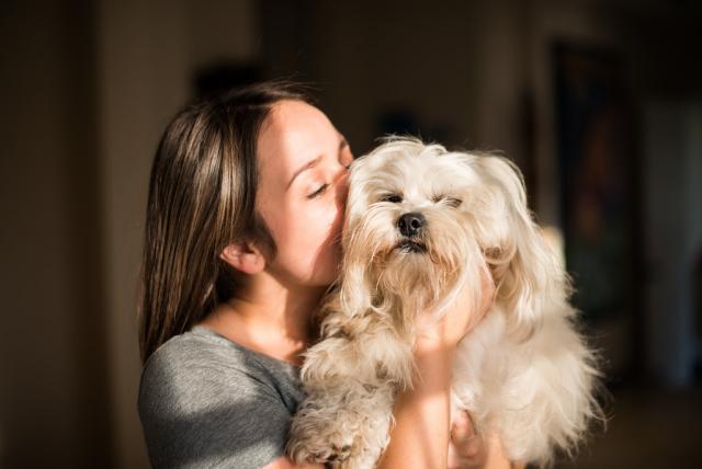 Foto Razze di cani che vivono più a lungo