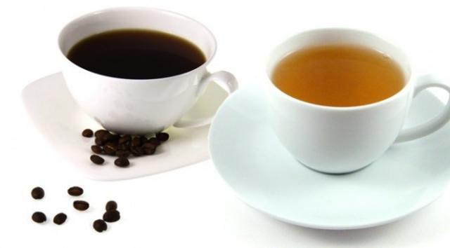 caffeina cane