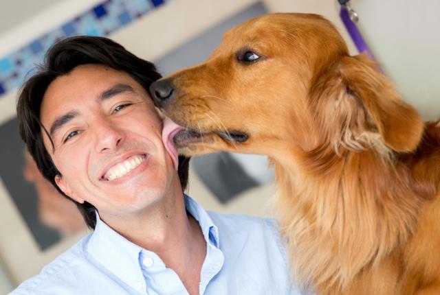 Foto I Cani ci amano veramente?