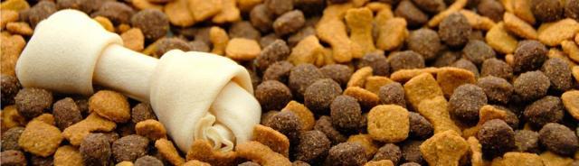 cibo secco cane