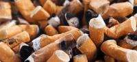 sigarette nocive animali