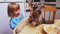 cane mangia pasta