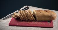 cane mangia pane