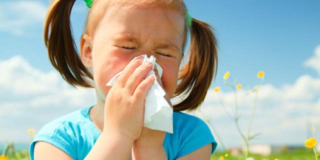bambini allergici cane