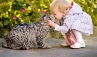 vermi gatto bambini