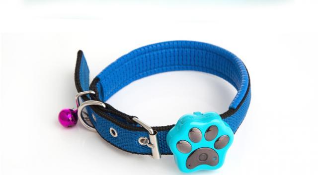 paw tracker gps per cani