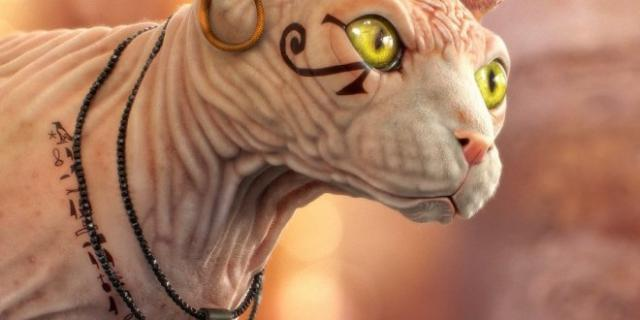 Nomi di gatti egiziani for Nomi per tartarughe femmine