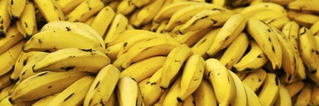 banane per criceto