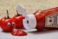 Foto I cani possono mangiare Ketchup?