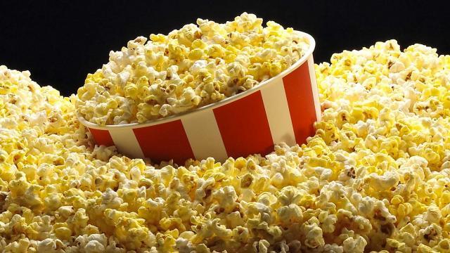 Foto I Cani possono mangiare popcorn?