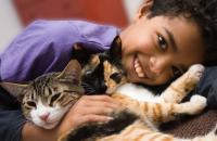 Foto Migliori gatti per bambini