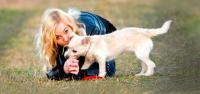 cure cuccioli cane