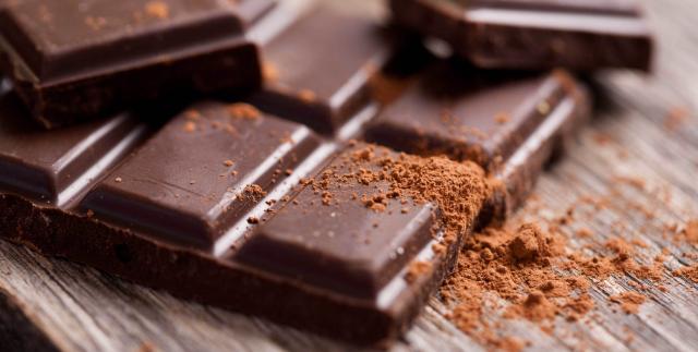 cioccolato cane