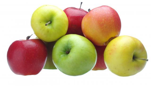 mele al cane