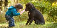 Foto Bambini e Cani: come educarli?