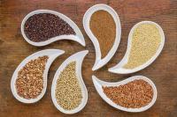 Foto Cereali nel cibo per cani: alcuni consigli