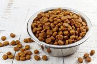 Foto Cibo per cani senza glutine: alcuni consigli