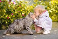 Foto Gatto e asma nei bambini?