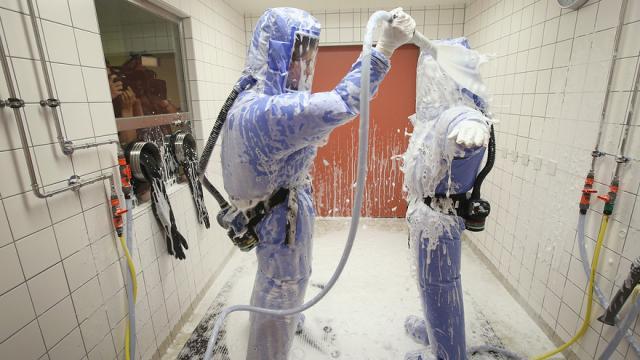 ebola animali