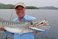 barracuda pesca