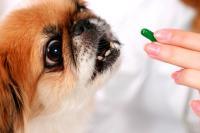 Foto Cloruro di Ammonio - Farmaci per cani e gatti.