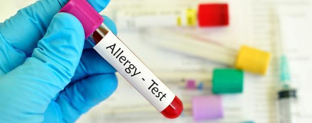 test allergologico cane