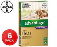 advantage spot on gatto