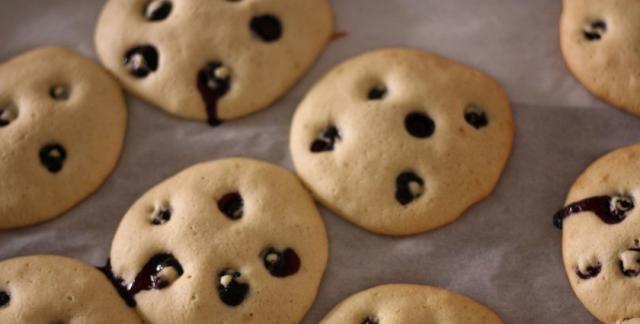 biscotti mirtilli per cani