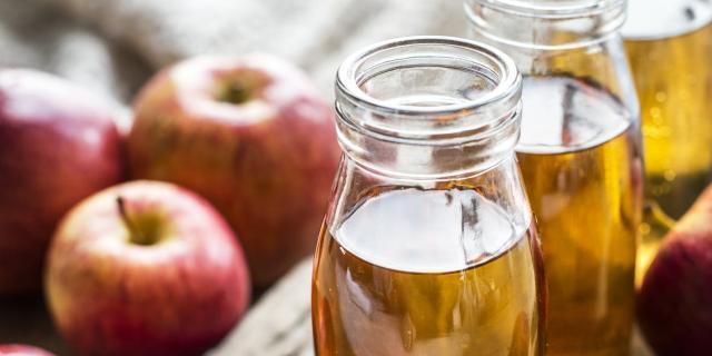 aceto di sidro di mele per cani