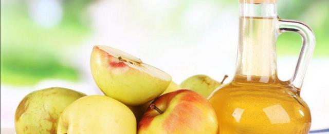 aceto sidro di mele al cane