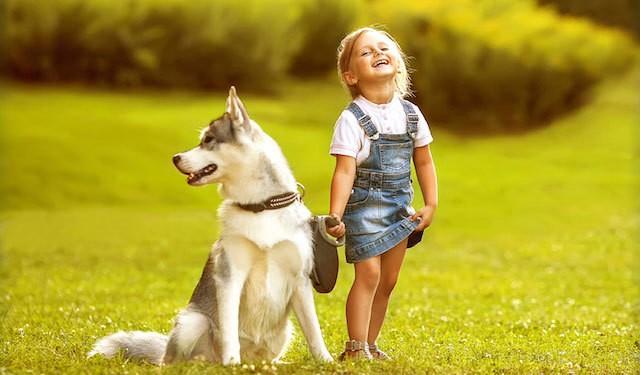 Foto 10 lezioni di vita che il cane può dare ai bambini