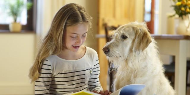 Foto Cani per bambini con ADHD