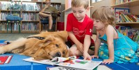 pet therapy bambini
