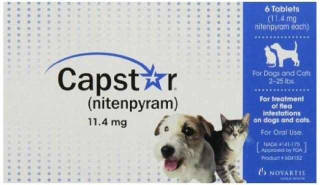 Foto Capstar (Nitenpyram) - Farmaci per cani e gatti