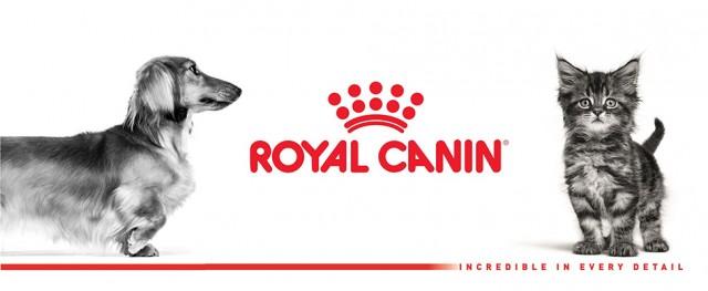 royal canin crocchette per cani sterilizzati