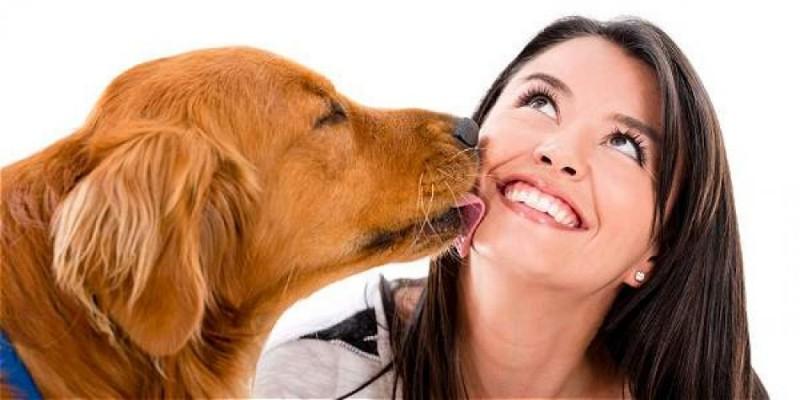 Foto Animali domestici e persone immunocompromesse
