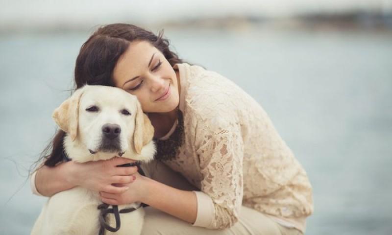 Foto L'ossitocina, l'ormone dell'amore, unisce cani e persone