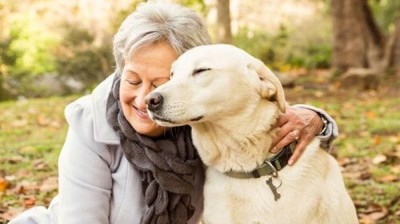 cani aiutano a vivere a lungo