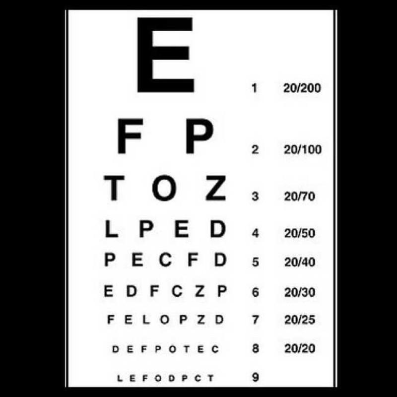 misurare vista cane