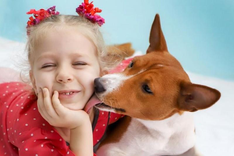 cane saliva lecca