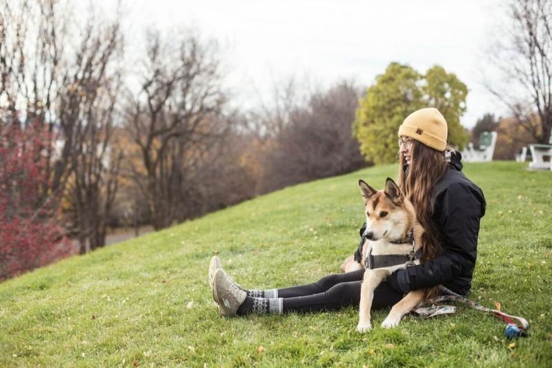 cane per disabili