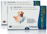 Foto Revolution (Selamectina) - Farmaci per cani e gatti
