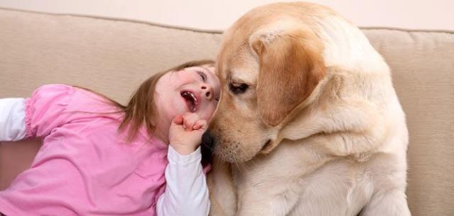 Foto Razze di cani per bambini autistici