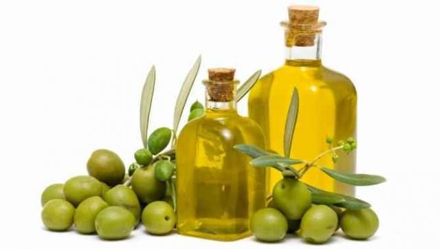 Foto Olio d'oliva per cani: usi e vantaggi
